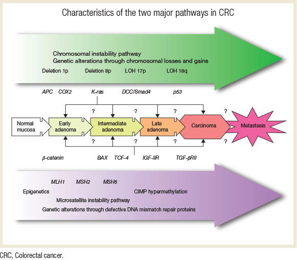 Gastrointestinal Cancer 1